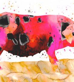 Katrina Mansfield Artist